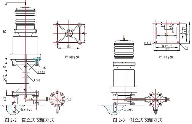 PLZ-3JHplant.jpg